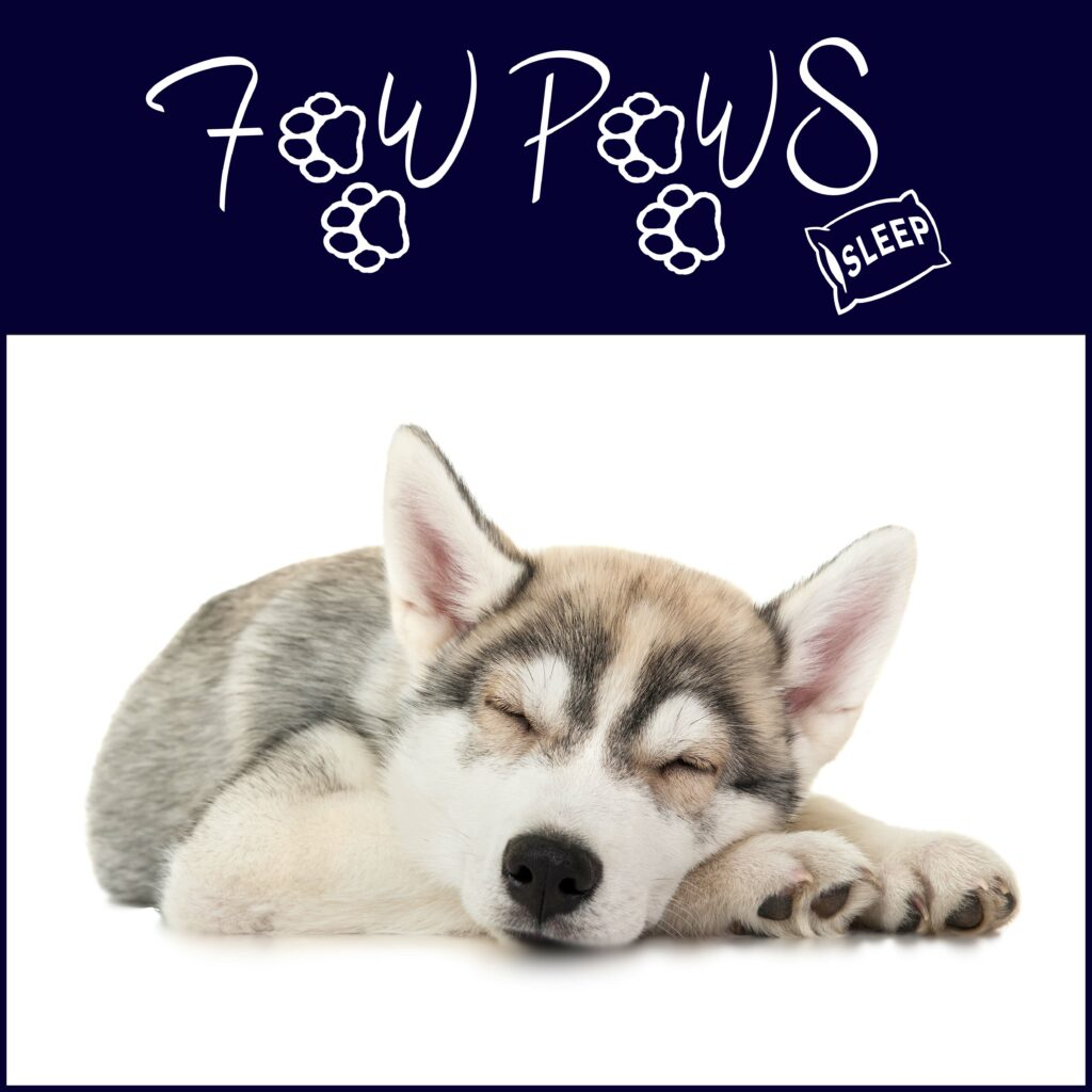 Visit FawPaws Sleep store for handmade dog beds